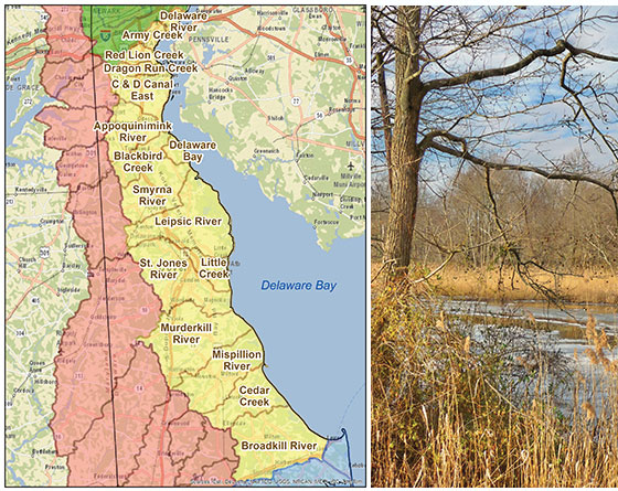 Delaware Bay & Estuary Basin Watershed Map
