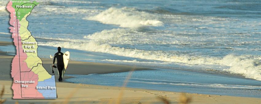 beaches_wp850x300